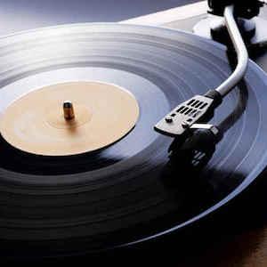 vinyl-300