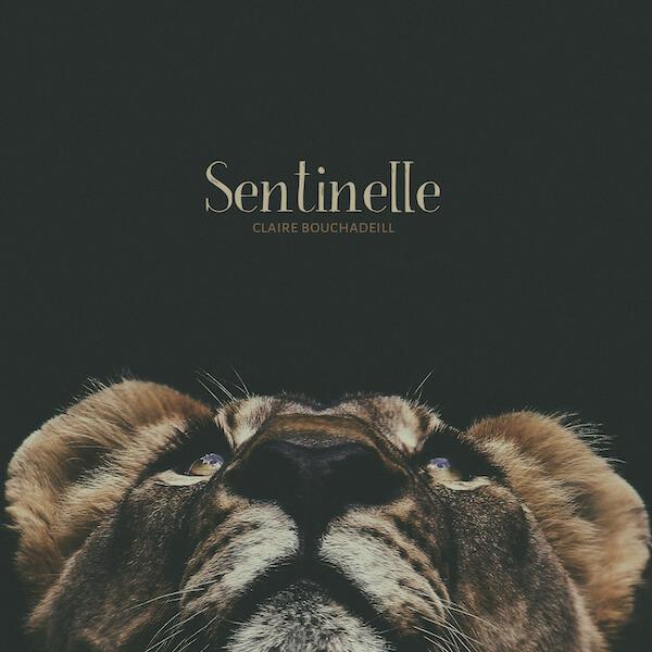 Sentinelle Claire Bouchadeill cover